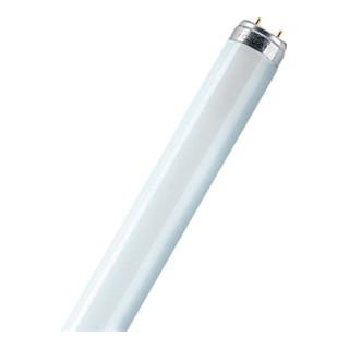 Leuchtstoffröhre36W cool white 3350LmL.120cmRohr-D.26mm20000h EnergyA Lichtf.840