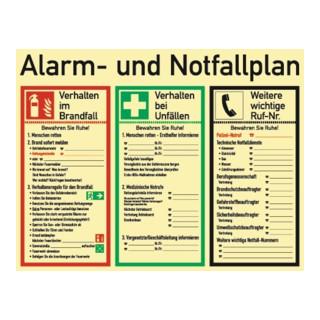 Alarm-/Notfallplan ASR A1.3/DIN EN ISO 7010/DIN 67510 L620xB480mm Ku.