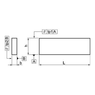 AMF Parallelunterlagen-Paar DIN6346P H.25xB.8xL.160mm
