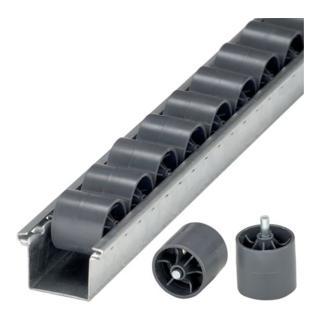 Rollenleisten mit Kunststoff-Zylinderrollen und Stahlachse
