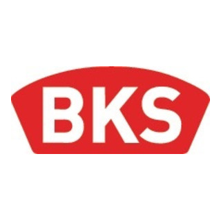BKS Profil-Doppelzylinder PZ 8812 31/31mm NuG beids.Anz.Schlü.3 gl.