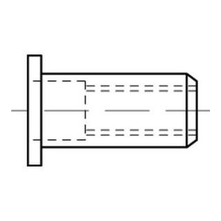 Blindnietmuttern A 4 Flachkopf M 6 / 3,0 - 5,5 S