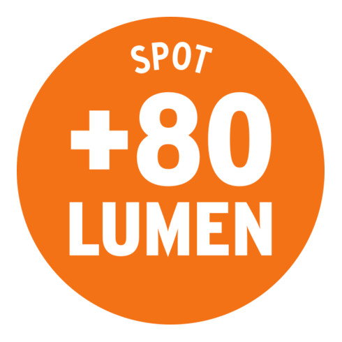 Brennenstuhl professionalLINE Akku LED-Handleuchte HL 2-00