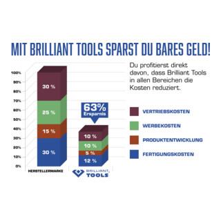 Brilliant Tools Nockenwellenlineal für Volkswagen, Audi, 170 mm