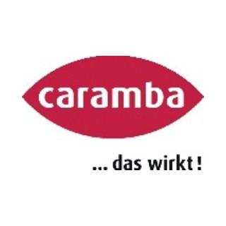 Caramba Sommer-Scheibenreiniger 1:100 Konzentrat 250ml
