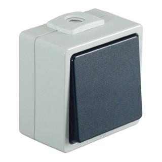 Feuchtraumtaster IP54 1polig Taster 1polig 250V 10A IP54 hellgrau/stahlbl.