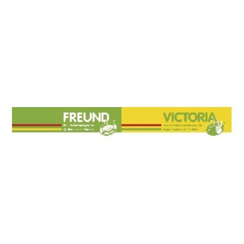 Freund Victoria Dunggabel Zinken-L.310mm 4 Zinken süddeutsch geschmiedet,o.Stiel G.800g