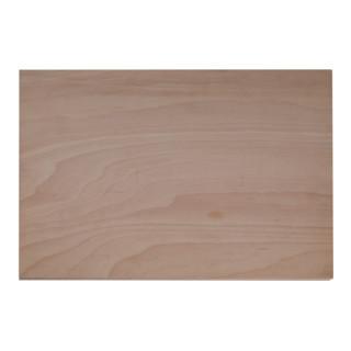 Gedore Holz-Arbeitsplatte für WorkMo B2
