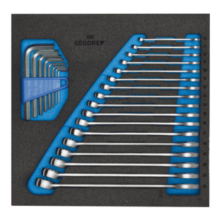 Gedore Ring-Maulschlüssel-Satz in Check-Tool-Modul