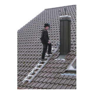 Günzburger Dachleiter Aluminium