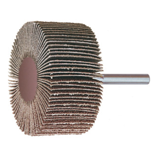 HOLEX Fächerschleifer (A) 20x10 mm