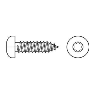 ISO 14585 Form CE Flachkopf-Blechschraube VG 3,9x16 Edelstahl A2 blank m. Spitze T15