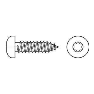 ISO 14585 Form CE Flachkopf-Blechschraube VG 6,3x19 Stahl galvanisch verzinkt TX m. Spitze