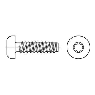 ISO 14585 Form FE Flachkopf-Blechschraube VG 3,9x16 Stahl galvanisch verzinkt m. Zapfen T15
