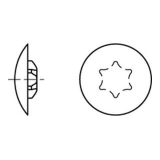 Kappen f. Torx 20 x 12/4-4,5 h. braun RAL 8001 S