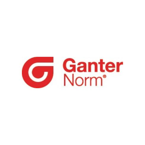 Miniraster GN 822.6 d1 6mm d2 M 12mm m. Rastsperre Ganter