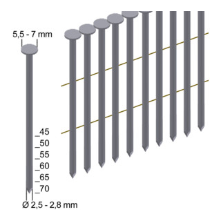 Prebena Coilnägel CNW25/65BK blank Länge 65 mm