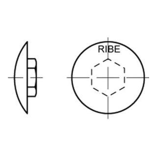 RIBE-Käppi 6 M 8 Kunststoff grau Kunstst S