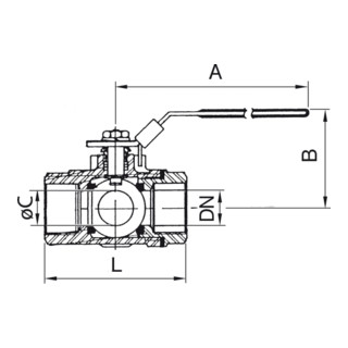 RIEGLER 3-Wege-Kugelhahn mit T-Bohrung, Edelstahl