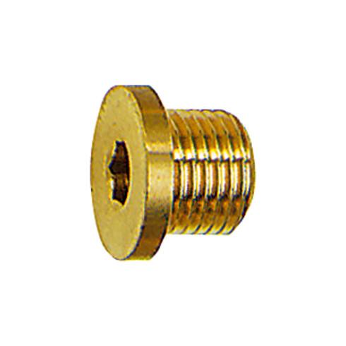 RIEGLER Verschlussschraube Innensechskant und Bund G 1/4 SW 6 Messing