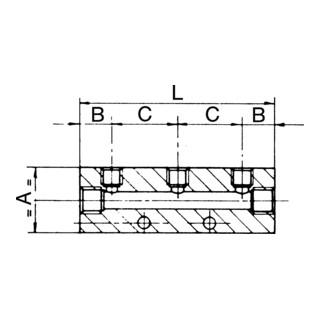 RIEGLER Verteilerleiste Abgänge einseitig Eingang 2x1/4 Ausgang 4x1/8