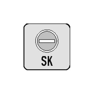Schlüsselrosetten-Paar E849S-SK VA F69 Schildstärke 2mm Bad SK/OL rd.