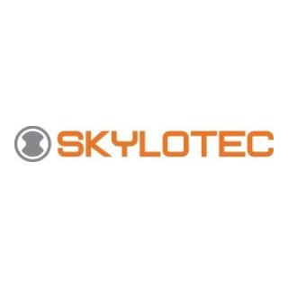 Skylotec Verbindungsmittel Skysafe Pro Flex Y EN354:2010,EN355:2002 Kat.3 PES L.ca.1,8m