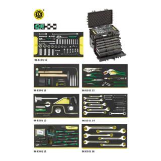 Stahlwille 13224a WT/TS AOG-Kit für Flugzeuge im Werkzeug-Trolley Nr.13217 28,4 kg
