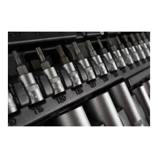 STIER Steckschlüssel-Satz, 1/4, 3/8 und 1/2 Zoll, 179-teilig