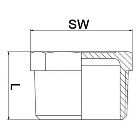 Stopfen EN 10226-1 NPS=1 Zoll 8-kant L 24mm SPRINGER