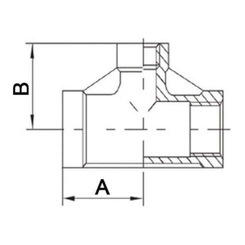 T-Stück EN 10226-1 NPS 3/8 Zoll NPS2 1/4 Zoll IG reduziert SPRINGER