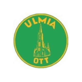 Ulmia Gehrungssäge 352L, Tisch-L. 440mm, Schnitt-H. 100mm