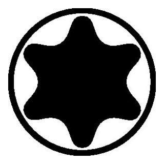 Wiha Bitsortiment 11tlg. TX 7/8/9/10/15/20/25/27/30/40 Univ.-Halter m.Magnet