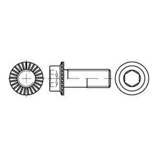 Zylinderkopf-Flanschschraube VG M12x30 Stahl 10.9 blank Innensechskant m. Sperrrippen